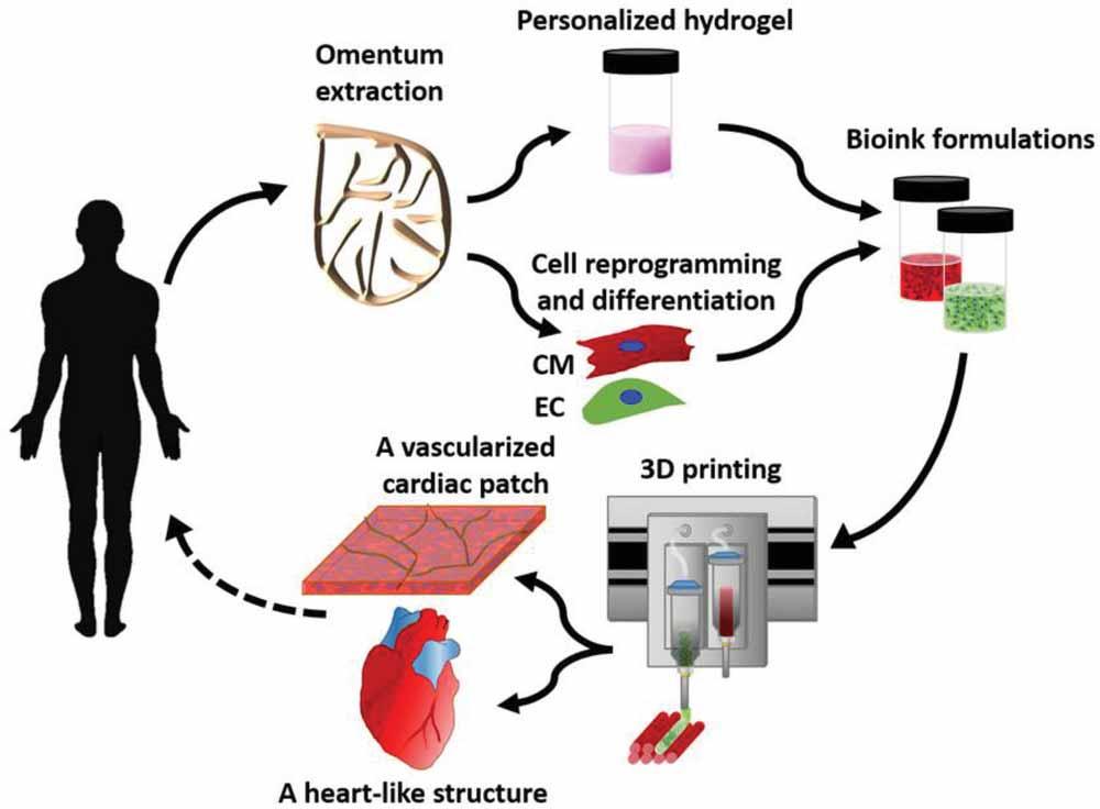 Proceso-Corazon-impreso-3d-celulas-humanas_c