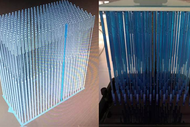 Muestras hisopos 3D